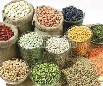 冬季养生重头戏 养生食物排行榜